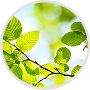 responsabilita-ambientale